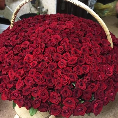 Купить на заказ Заказать 1001 роза с доставкой по Усть-Каменогорску с доставкой в Усть-Каменогорске