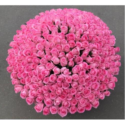 Купить на заказ Заказать 501  роза с доставкой по Усть-Каменогорску с доставкой в Усть-Каменогорске