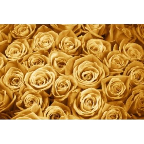 Купить на заказ Заказать Золотые розы  101 шт с доставкой по Усть-Каменогорску с доставкой в Усть-Каменогорске