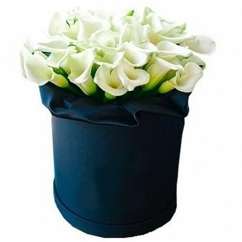 Купить на заказ Каллы в шляпной коробке (39 шт.) с доставкой в Усть-Каменогорске