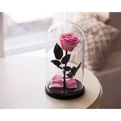 Купить на заказ Заказать Роза в колбе розовая с доставкой по Усть-Каменогорску с доставкой в Усть-Каменогорске