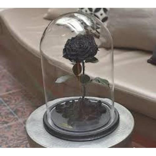 Купить на заказ Заказать Роза в колбе  черная с доставкой по Усть-Каменогорску с доставкой в Усть-Каменогорске